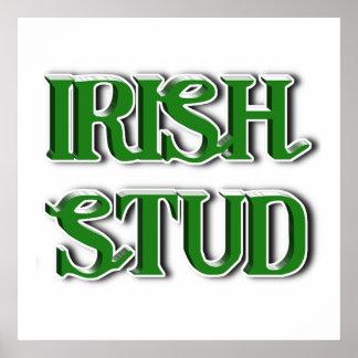 Irish Stud Text Image Posters