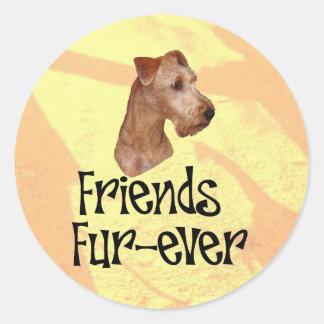 "Irish Terrier ""friends fur more ever "" Classic Round Sticker"