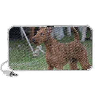 Irish Terrier Speaker