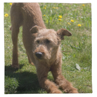 Irish Terrier Yoga Cloth Napkin