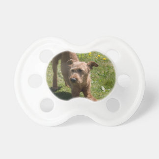 Irish Terrier Yoga Pacifier