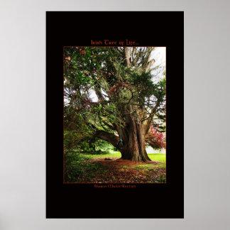Irish Tree of Life Poster Print