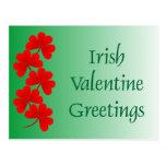 Irish Valentine Greetings Postcard