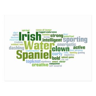 Irish Water Spaniel Postcard