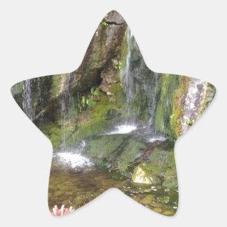 Irish Waterfalls In Blarney Castle Garden Ireland Star Sticker