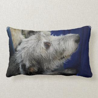 irish-wolfhound-2.jpg cojin