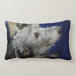 irish-wolfhound-2.jpg throw pillow