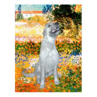Irish Wolfhound 4 - Garden (VG) Postcard