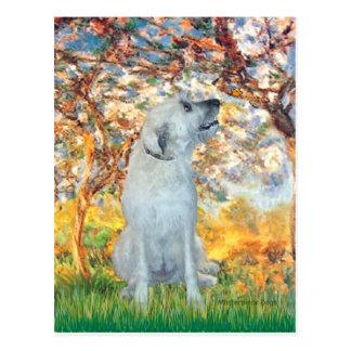 Irish Wolfhound 4 - Spring Postcard