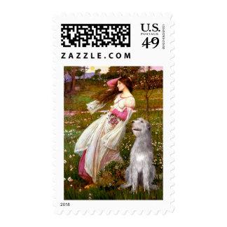 Irish Wolfhound 6 - Windflowers Stamps