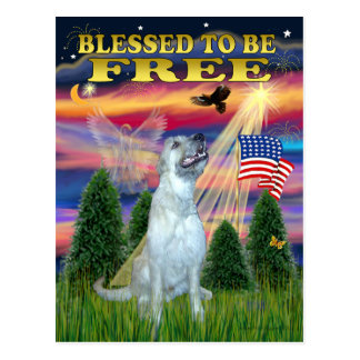 Irish Wolfhound (D) Postcards