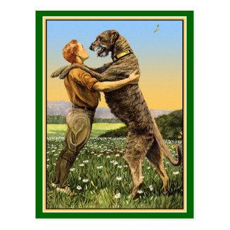 """Irish Wolfhound Greeting"" Postcard"