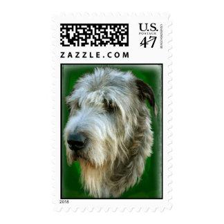 Irish Wolfhound Head Study Green Stamp