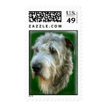 Irish Wolfhound Head Study Green Stamps