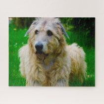 Irish Wolfhound. Jigsaw Puzzle