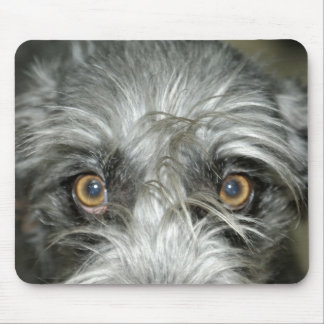 Irish wolfhound mouse PADs