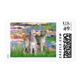 Irish Wolfhound Pair - Lilies 2 Stamp