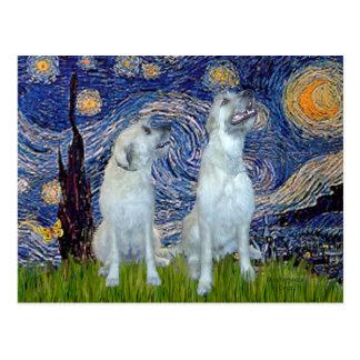 Irish Wolfhound Pair - Starry Night Postcard