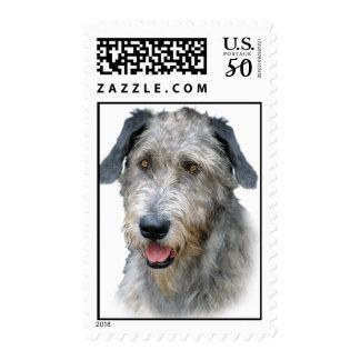 Irish Wolfhound Portrait Postage