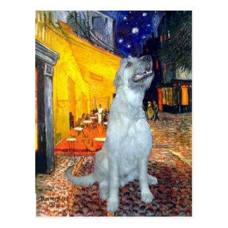 Irish Wolfhound - Terrace Cafe - Customized Postcard