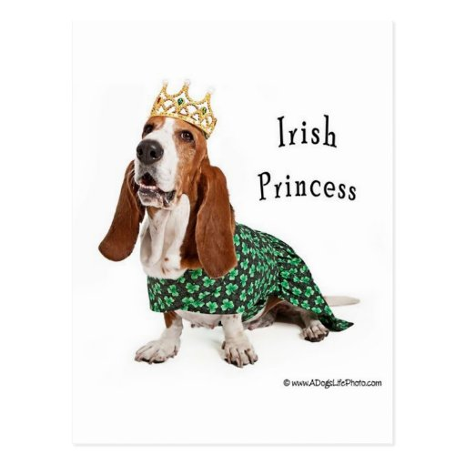 IrishPrincess Tarjeta Postal