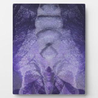 irissheer.jpg display plaque