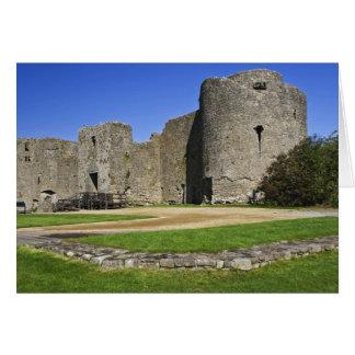 Irlanda, castillo de Roscommon. Vista a Felicitacion