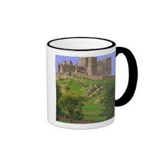 Irlanda, condado Tipperary. Vista de la roca de Tazas De Café