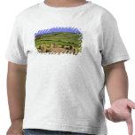 Irlanda, corcho del condado. La piedra de Dromberg Camisetas