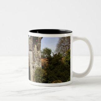 Irlanda el jardín emparedado castillo de Dromolan Tazas