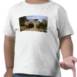 Irlanda, el jardín emparedado castillo de camisetas