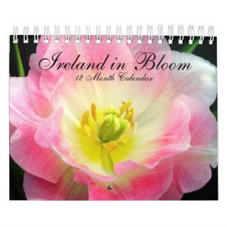 Irlanda en calendario de la floración