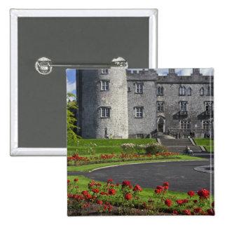 Irlanda Kilkenny Vista del castillo de Kilkenny Pins