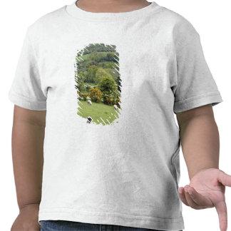 Irlanda occidental, península de la cañada, amplia camiseta