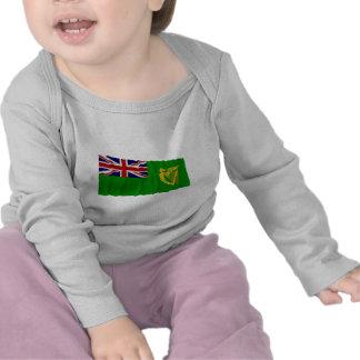 Irlanda que agita la bandera verde camiseta