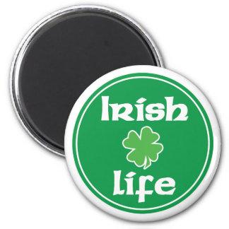 Irlandés imán de 4 vidas