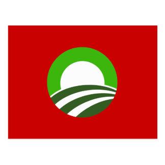 Irlandés Obama Tarjetas Postales