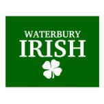 ¡IRLANDÉS orgulloso de WATERBURY! El día de St Pat Postales