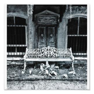 Iron Bench, Savannah Photo Print
