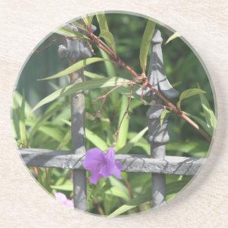 Iron fence, green leaves, purple flower coaster
