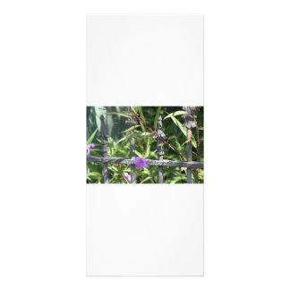 Iron fence, green leaves, purple flower rack card