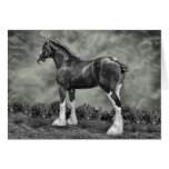 Iron Horse Steele Greeting Cards