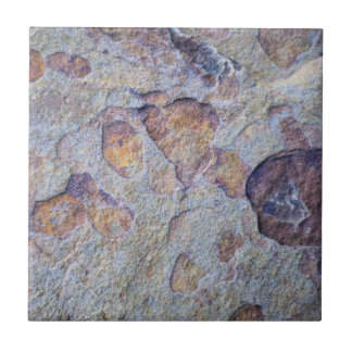 Iron Ore Stone Rock Ceramic Tile