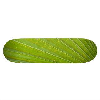 Ironwood Skateboard