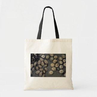 Irradie la lapa radianes de Cellana Shell Bolsas De Mano