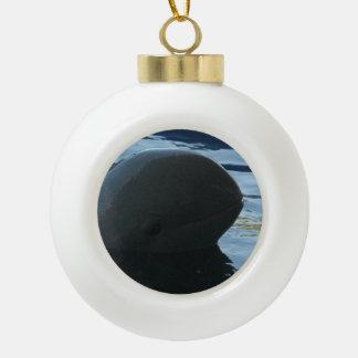 Irrawaddy Dolphin Peek-A-Boo Ceramic Ball Christmas Ornament