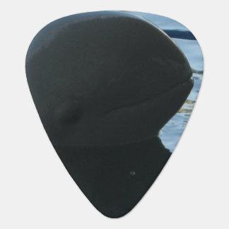 Irrawaddy Dolphin Peek-A-Boo Guitar Pick