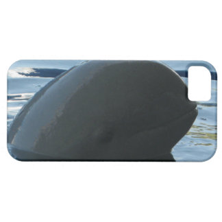 Irrawaddy Dolphin Peek-A-Boo iPhone SE/5/5s Case
