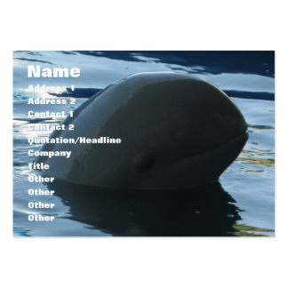 Irrawaddy Dolphin Peek-A-Boo Large Business Cards (Pack Of 100)