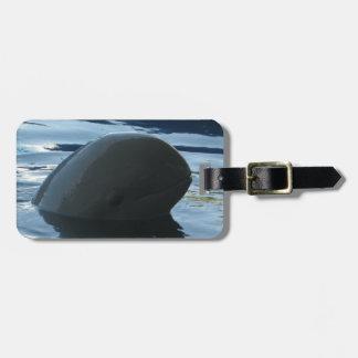 Irrawaddy Dolphin Peek-A-Boo Luggage Tag